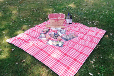 picnic at the château