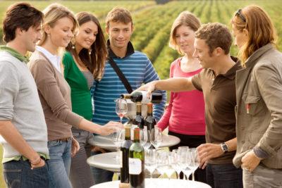 wine tasting in vineyard
